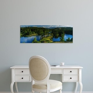 Easy Art Prints Panoramic Images's 'Trees, Tarn Hows, Coniston, English Lake District, Cumbria, England' Canvas Art
