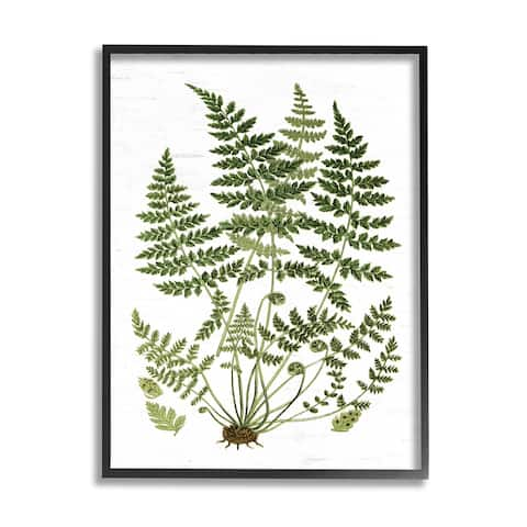 Stupell Industries Forest Botanicals Charming White Willow Greenery Framed Wall Art