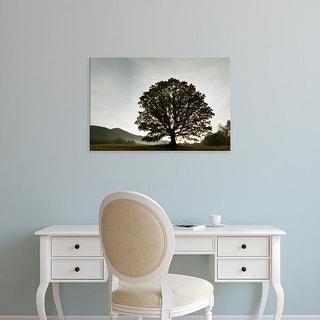 Easy Art Prints Adam Jones's 'Single Tree At Sunrise' Premium Canvas Art