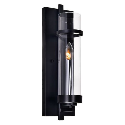 The Gray Barn Freckled Fanny 1-light Wall Sconce with Black Finish