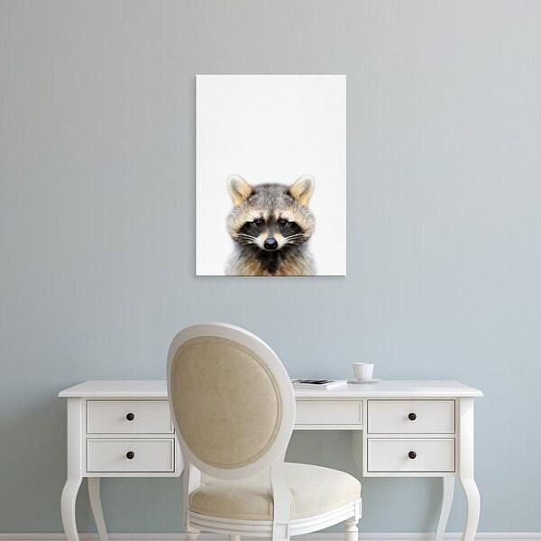 Easy Art Prints Tai Prints's 'Raccoon' Premium Canvas Art