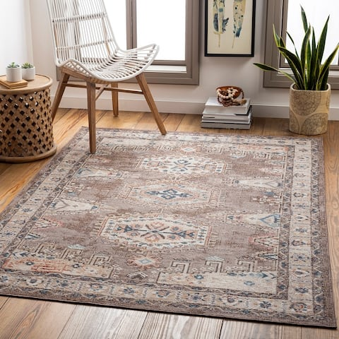 Erielle Indoor/ Outdoor Persian Area Rug