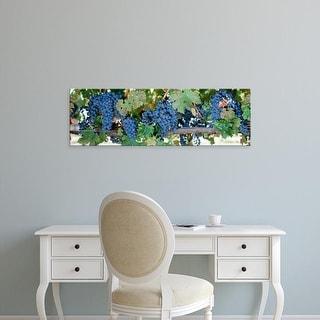 Easy Art Prints Panoramic Images's 'Grapes Napa Valley CA' Premium Canvas Art
