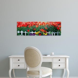Easy Art Prints Panoramic Images's 'Flowers in bloom, Alaska, USA' Premium Canvas Art