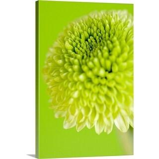 """""""Green flower"""" Canvas Wall Art"""