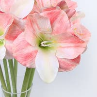"G Home Collection Clivia Orchid Stem in White Pink 30"" Tall"