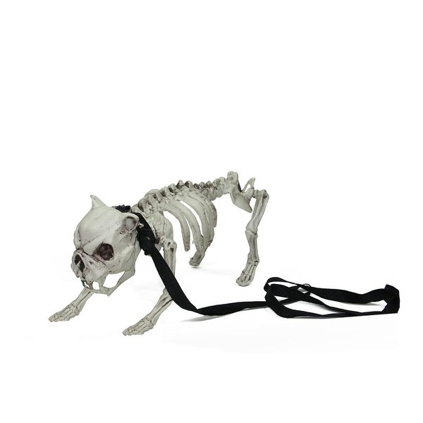 16 distressed cream white dog skeleton on leash indooroutdoor halloween decoration