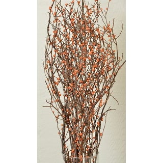 Dried Sweet Huck Branches with Bittersweet (Orange) faux berries Large 4oz Bunch, About 20 branches 22-26in tall Single Bunch