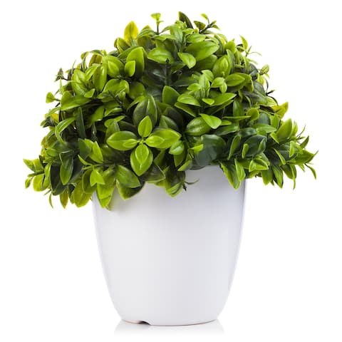 Enova Home Artificial Eucalyptus Plant in White Pot and Planter For Home Office Decoration