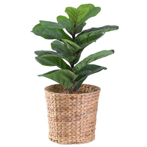 Natural Water Hyacinth Round Waste Basket