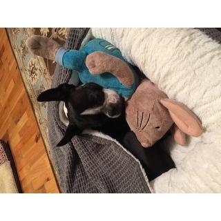 Best Friends by Sheri Cozy Cuddler Mason Dog Bed
