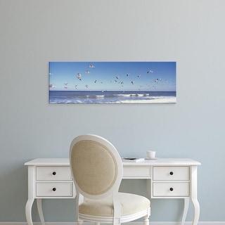 Easy Art Prints Panoramic Images's 'Birds flying over the sea, Flagler Beach, Florida, USA' Premium Canvas Art