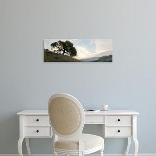 Easy Art Prints Alan Blaustein's 'Oak Tree #13' Premium Canvas Art