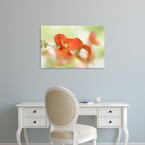 Easy Art Prints Mandy Disher's 'Summer Glow' Premium Canvas Art