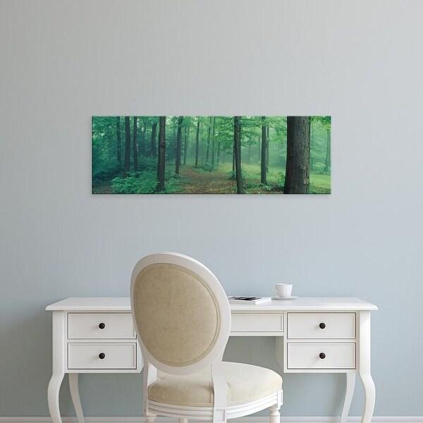 Easy Art Prints Panoramic Images's 'Chestnut Ridge Park, Orchard Park, New York State, USA' Premium Canvas Art