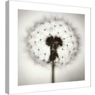 "PTM Images 9-98979  PTM Canvas Collection 12"" x 12"" - ""Dandelion 1"" Giclee Dandelions Art Print on Canvas"