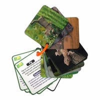 Animal Planet Pets & Farm Animals 3D Flash Cards (20 Cards)