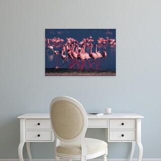 Easy Art Prints Dee Ann Pederson's 'Lake Nakuru Lesser Flamingo' Premium Canvas Art
