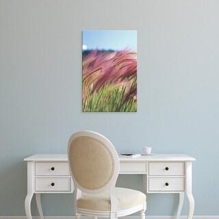 Easy Art Prints Michele Westmorland's 'Wild Barley' Premium Canvas Art