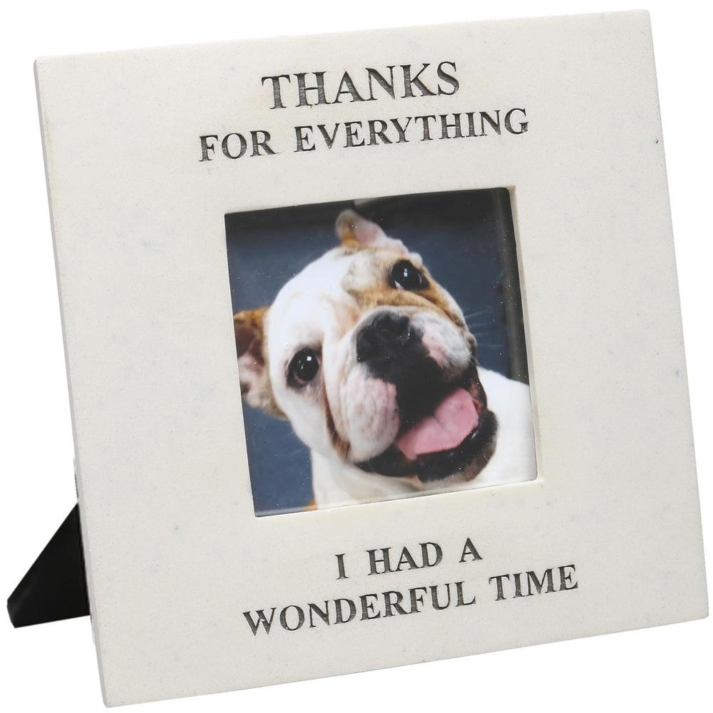 Memorial Photo Frame, Thanks For Everything I Had a Wonderful Time - Picture Frame For Lost Pet or Loved One, Holds 3 x 3 Photo