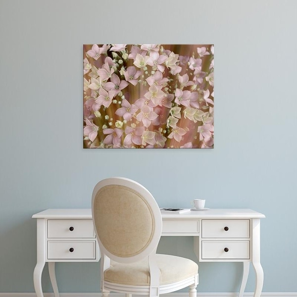 Easy Art Prints Danielle Harrington's 'Soft Floral II' Premium Canvas Art