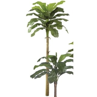 Autograph Foliages P-0773 - 15 Foot Banana Palm - Green