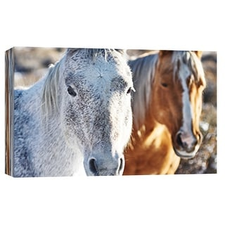 """PTM Images 9-101860  PTM Canvas Collection 8"""" x 10"""" - """"Horse Fort Ranch 6"""" Giclee Horses Art Print on Canvas"""