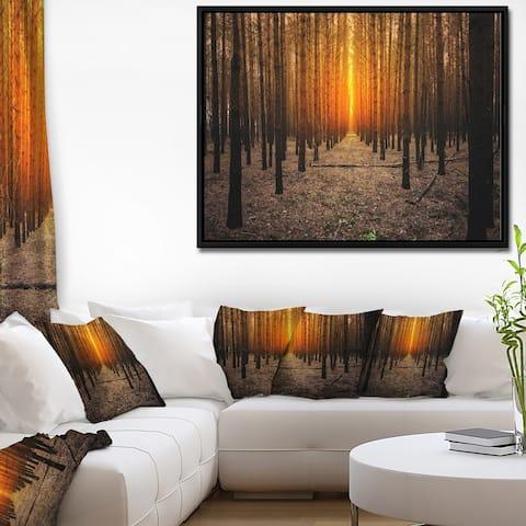 Designart 'Halloween Themed Spooky Dark Forest' Oversized Forest Framed Canvas Art
