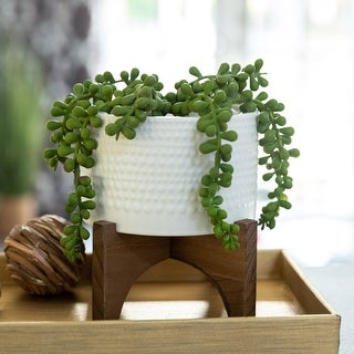 """Link to 5""""  String of Pearl in Hobnail Ceramic Planter on  Stand - ONE-SIZE Similar Items in Decorative Accessories"""