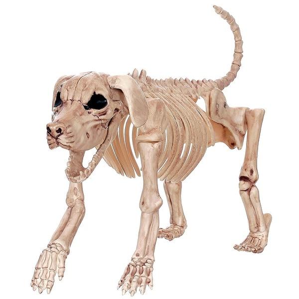 Beagle Bonez Halloween Decoration