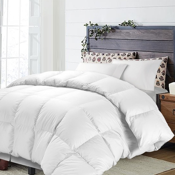 NTBAY Super Soft Luxury All Season Solid Color Twin&Queen&King Down Alternative Comforter Hypoallergenic Microfiber Duvet Insert. Opens flyout.