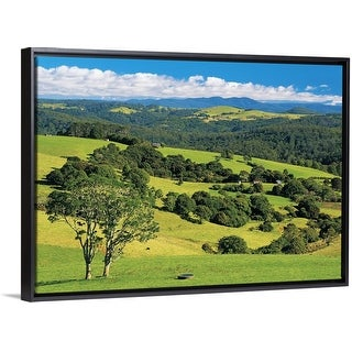 """Pastoral scene near Dorrigo, New South Wales, Australia"" Black Float Frame Canvas Art"