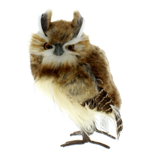 Brown Fur Hoot Owl
