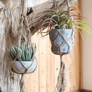 RusticReach Hemp Rope Plant Hanger with Potted Succulent Plant