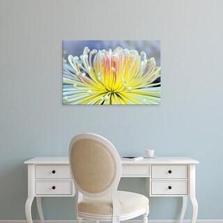 Easy Art Prints Rob Tilley's 'Chrysanthemum' Premium Canvas Art