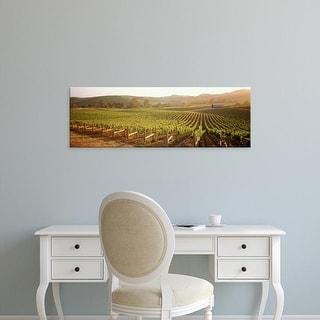 Easy Art Prints Panoramic Image 'Panoramic view of vineyards, Carneros District, Napa Valley, California' Canvas Art