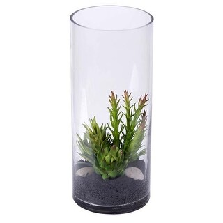 Vickerman Cylinder Everyday Floral with Succulent Plants - 12 in.