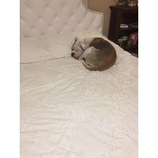 Shop Safavieh Arebelle White Velvet Upholstered Tufted