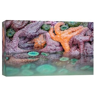 "PTM Images 9-102170  PTM Canvas Collection 8"" x 10"" - ""Sea Life"" Giclee Starfishes Art Print on Canvas"