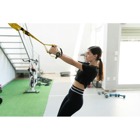 Bodyweight Suspension Resistance Trainer Kit with Door Anchor Buckle - N/A