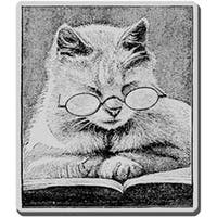 """Cattus Librum - Stampendous Cling Rubber Stamp 3.5""""X4"""" Sheet"""