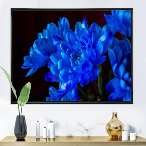 Designart 'Blue Chrysanthemum Flowers on Black II' Traditional Framed Canvas Wall Art Print