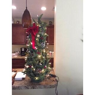 Fresh-cut Classic Pre-lit 28-inch Maine Balsam Tabletop Tree