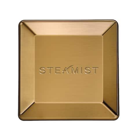 Steamist 3199 Universal Steam Head -