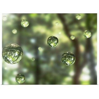 """""""Water drops in the forest"""" Poster Print"""