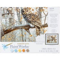 "Paint Works Paint By Number Kit 14""X11""-Wise Owl"
