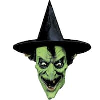 Witch Costume Mask - Green