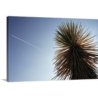 """Joshua Tree Cactus"" Canvas Wall Art"