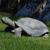 Sunnydaze Todd the Tortoise Indoor Outdoor Statue 30 Inch Long