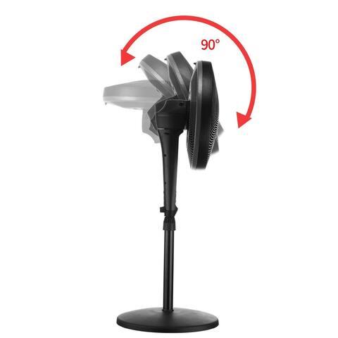 Zenova Low Noice Black (18-Inch) Fan 4 Speed and 3 Wind Modes - 50 x 84